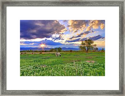 Spring Sunset Over The Rockies Framed Print