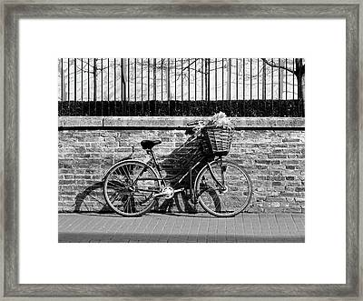 Framed Print featuring the photograph Spring Sunshine And Shadows In Black And White by Gill Billington