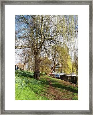 Spring Sunshine On Cambridge Riverbank Framed Print by Gill Billington
