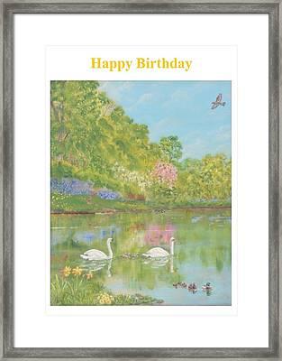 Spring Swans Birthday Framed Print by David Capon