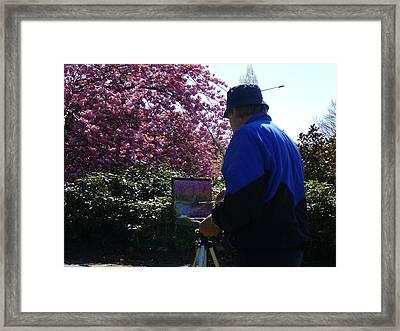 Spring Time Dunedin Nz Framed Print by Terry Perham