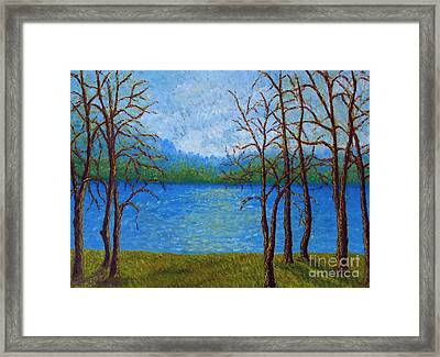 Spring Time In Arkansas Framed Print by Vivian Cook