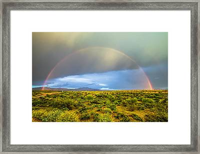 Spring Time In The Desert Framed Print by Stacy LeClair