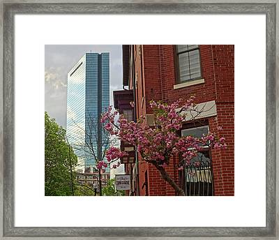 Spring Time In The South End Boston Ma Framed Print