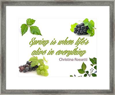 Spring Time Quotes Framed Print by Celestial Images