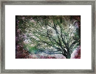 Framed Print featuring the painting Spring Tree by Gray  Artus