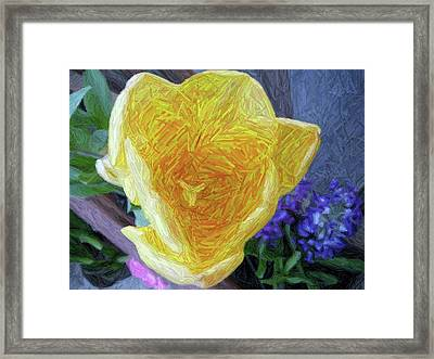 Framed Print featuring the photograph Spring Tulip by Susan Carella