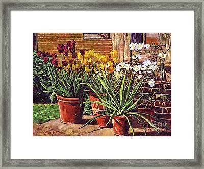 Spring Tulips And White Azaleas Framed Print by David Lloyd Glover
