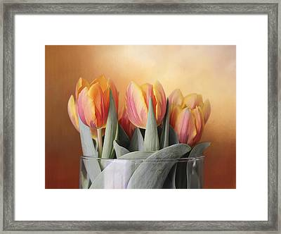 Spring Tulips Framed Print by Kathleen Holley