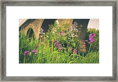 Framed Print featuring the photograph Spring Under The Arches by Viviana  Nadowski