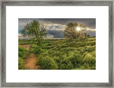 Spring Utopia Framed Print