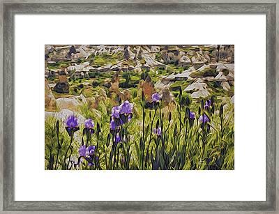 Spring Valley, Cappadocia Framed Print