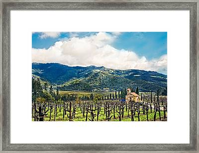 Framed Print featuring the photograph Spring Vines by Kim Wilson