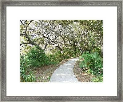 Spring Walkway Framed Print by Bea Godwin