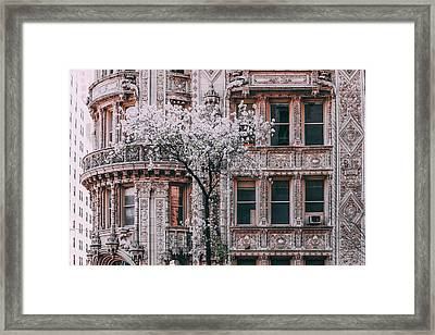 Spring West 58 And 7th Framed Print by Vincent James