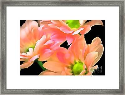 Spring Whispers Framed Print by Krissy Katsimbras