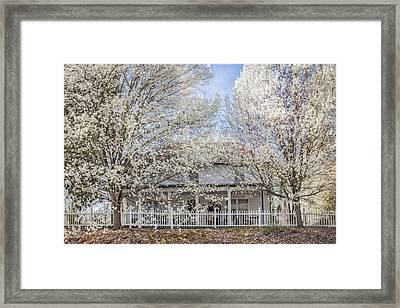 Spring Whites Framed Print by Debra and Dave Vanderlaan