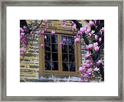 Spring Window Framed Print
