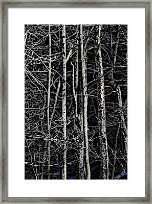 Spring Woods Simulated Woodcut Framed Print by David Lane