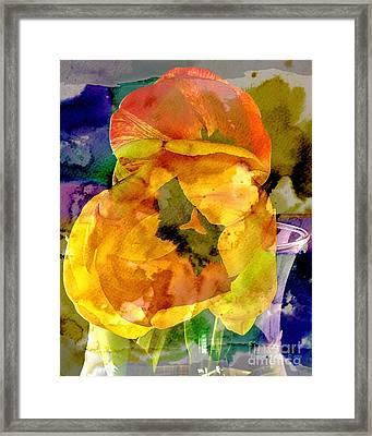 Spring Xx Framed Print