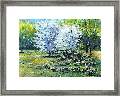 Spring Framed Print by Yuriy  Shevchuk