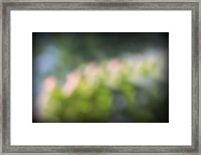 Spring9943 Framed Print by Carolyn Stagger Cokley