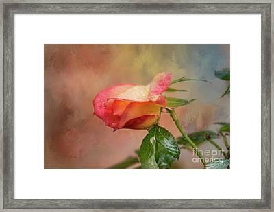 Springing Forth Framed Print