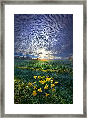 Springing To Life Framed Print by Phil Koch