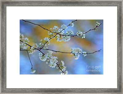 Springing To Life Framed Print