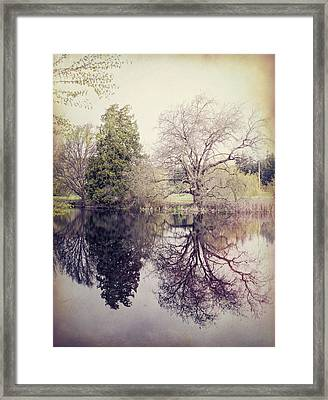 Two Trees Reflected - Textured Framed Print by Marilyn Wilson
