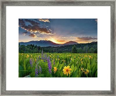 Spring's Delight Framed Print by Leland D Howard