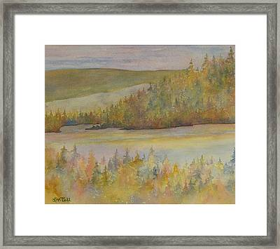 Springs In The Valley Framed Print by Lisa Bell