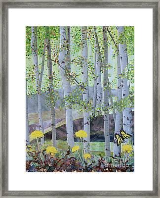 Springtime Aspens Framed Print