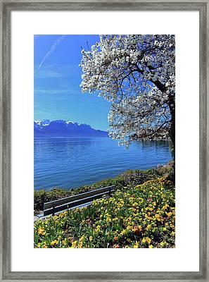Springtime At Geneva Or Leman Lake, Montreux, Switzerland Framed Print by Elenarts - Elena Duvernay photo