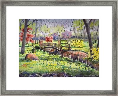 Springtime Backyard Framed Print