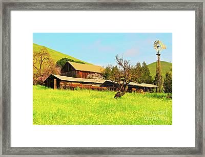 Springtime Barn San Francisco Bay Framed Print by Gus McCrea
