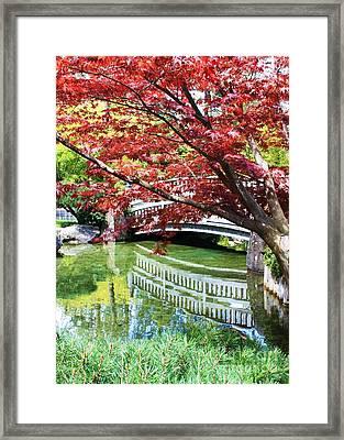 Springtime Bridge Framed Print by Carol Groenen