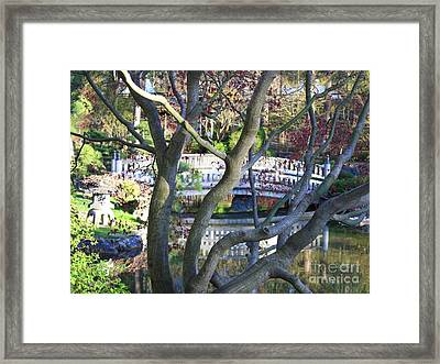 Springtime Bridge Through Japanese Maple Tree Framed Print by Carol Groenen