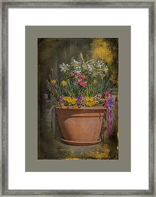 Springtime Flowers Framed Print by Mother Nature