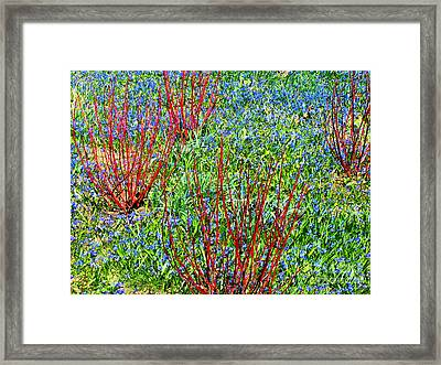 Framed Print featuring the photograph Springtime Impression by Ann Horn