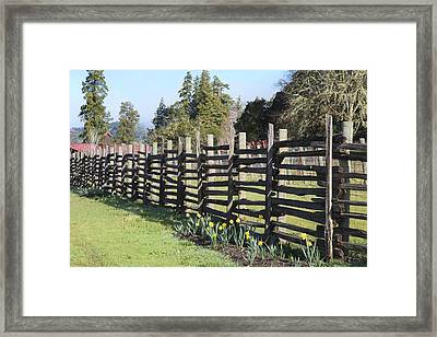 Springtime In Anderson Valley Framed Print