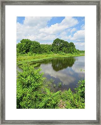 Springtime In Arkansas Framed Print