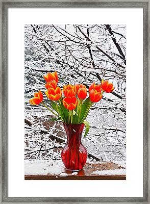 Springtime In Colorado 3 Framed Print by Diane Alexander