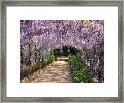 Springtime In Florence Framed Print by Gerald Hiam