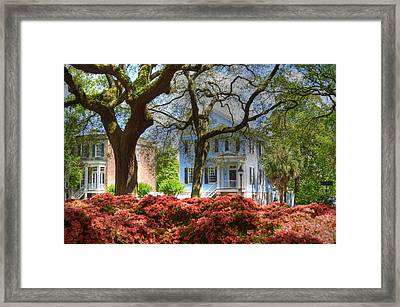 Springtime In Savannah Framed Print