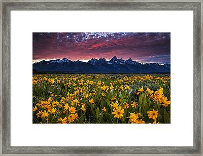 Springtime In The Mountains Framed Print by Andrew Soundarajan