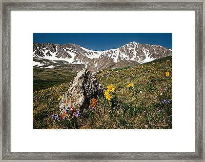 Springtime In The Rockies Framed Print by Joe Bonita