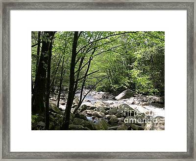 Springtime In The Smoky Mountains Framed Print by Barb Montanye Meseroll