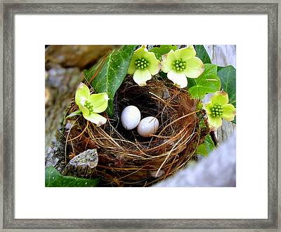 Springtime Framed Print by Karen Wiles