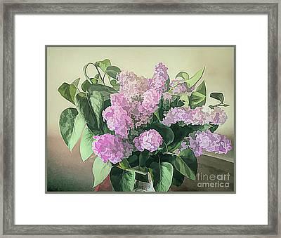 Springtime Lilacs Framed Print